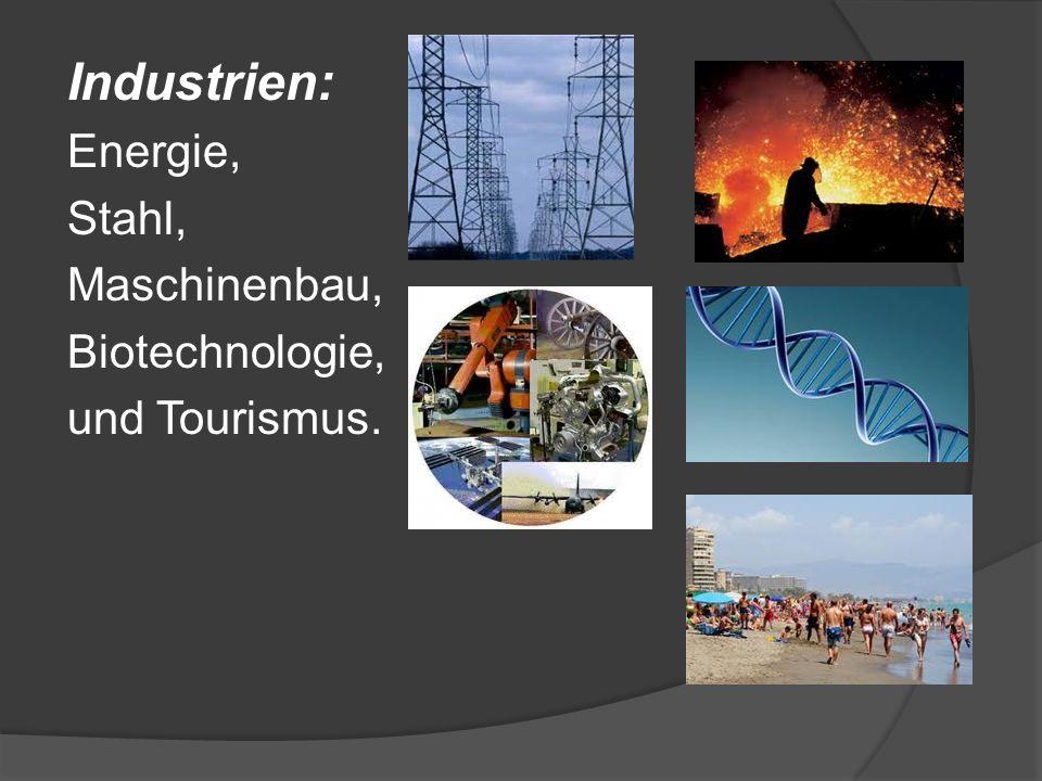 Industrien: Energie, Stahl, Maschinenbau, Biotechnologie,