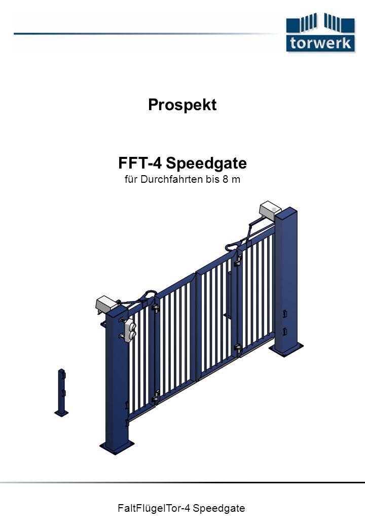 FaltFlügelTor-4 Speedgate