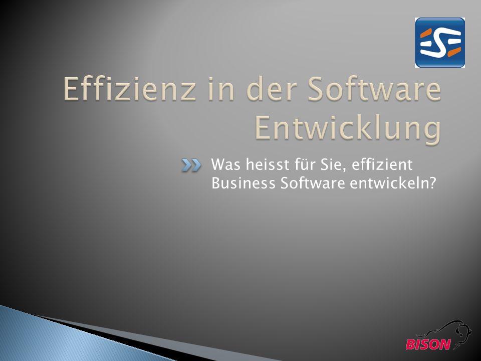 Effizienz in der Software Entwicklung