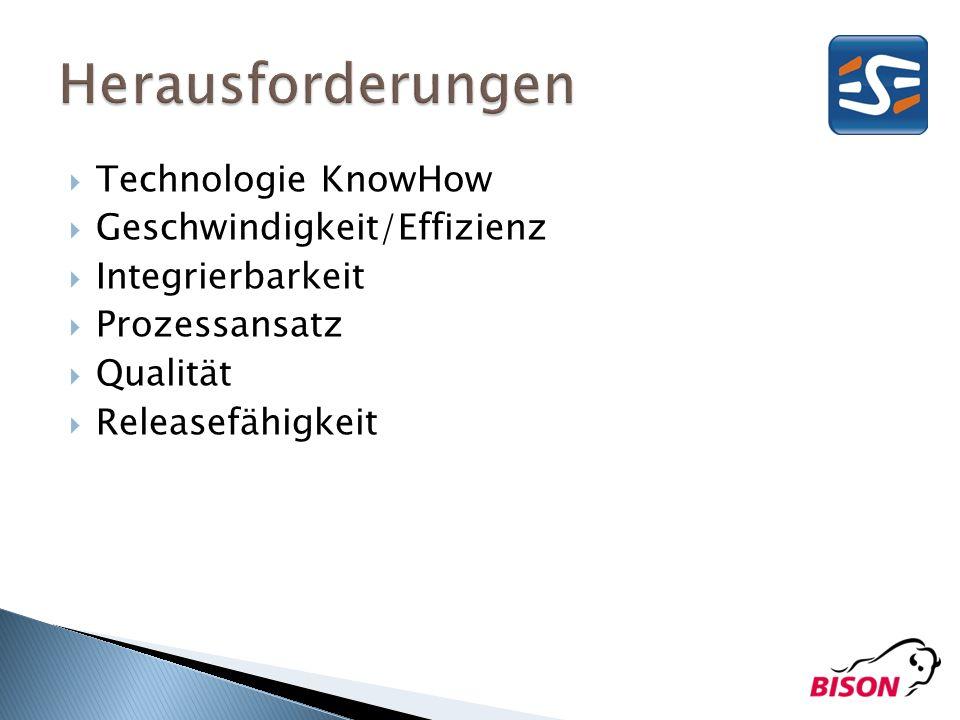 Herausforderungen Technologie KnowHow Geschwindigkeit/Effizienz