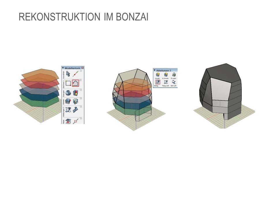 REKONSTRUKTION IM BONZAI