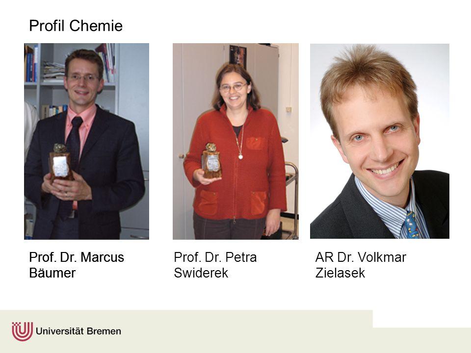 Profil Chemie Prof. Dr. Marcus Bäumer Prof. Dr. Marcus Bäumer