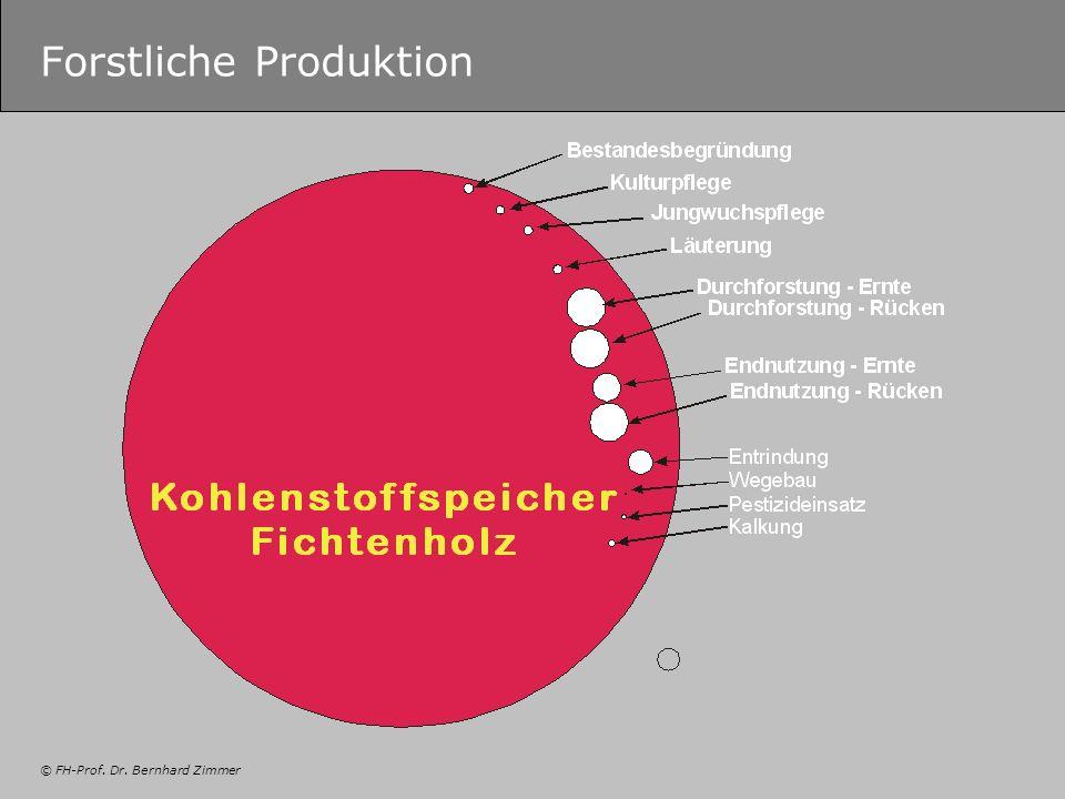 Forstliche Produktion
