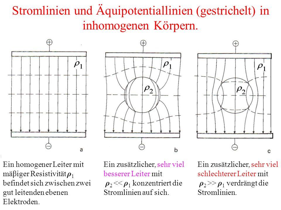 Stromlinien und Äquipotentiallinien (gestrichelt) in inhomogenen Körpern.