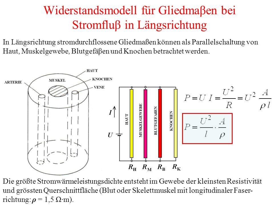 Widerstandsmodell für Gliedmaβen bei Stromfluβ in Längsrichtung