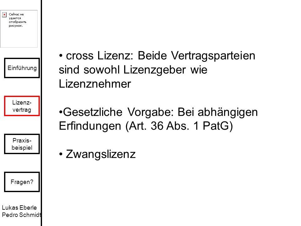 • cross Lizenz: Beide Vertragsparteien sind sowohl Lizenzgeber wie Lizenznehmer
