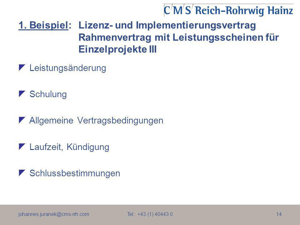 1. Beispiel:. Lizenz- und Implementierungsvertrag