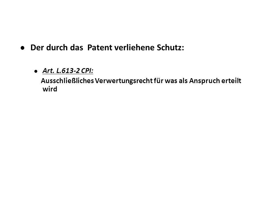 Der durch das Patent verliehene Schutz: