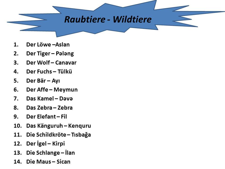 Raubtiere - Wildtiere Der Löwe –Aslan Der Tiger – Pələng