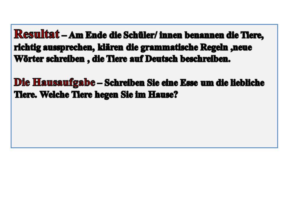 Resultat – Am Ende die Schüler/ innen benannen die Tiere, richtig aussprechen, klären die grammatische Regeln ,neue Wörter schreiben , die Tiere auf Deutsch beschreiben.
