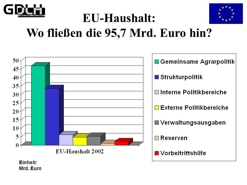 EU-Haushalt: Wo fließen die 95,7 Mrd. Euro hin