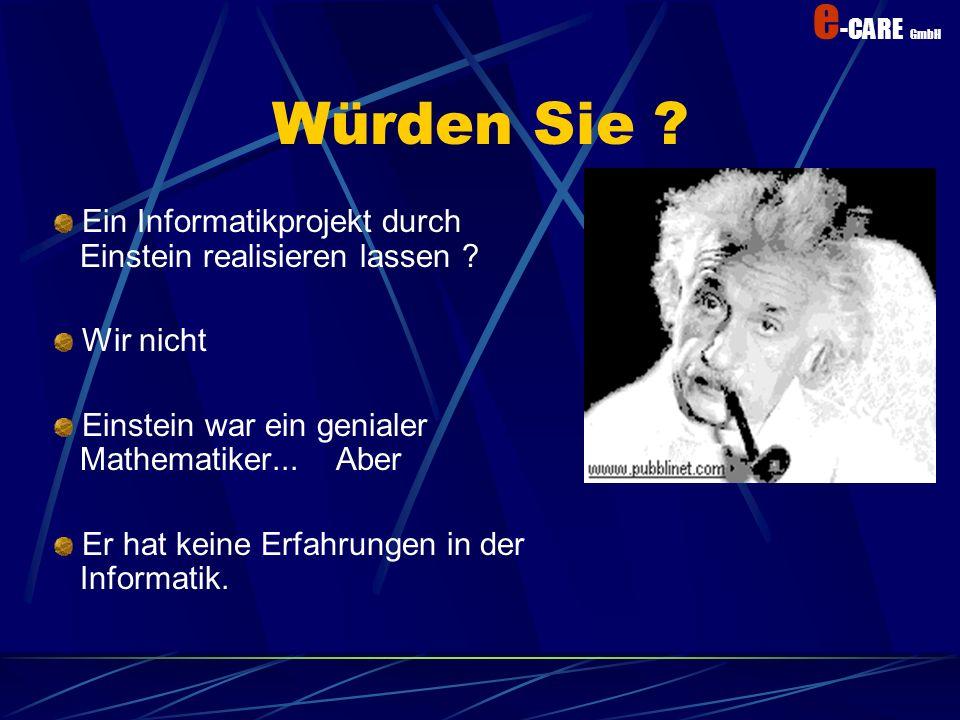 Würden Sie Ein Informatikprojekt durch Einstein realisieren lassen