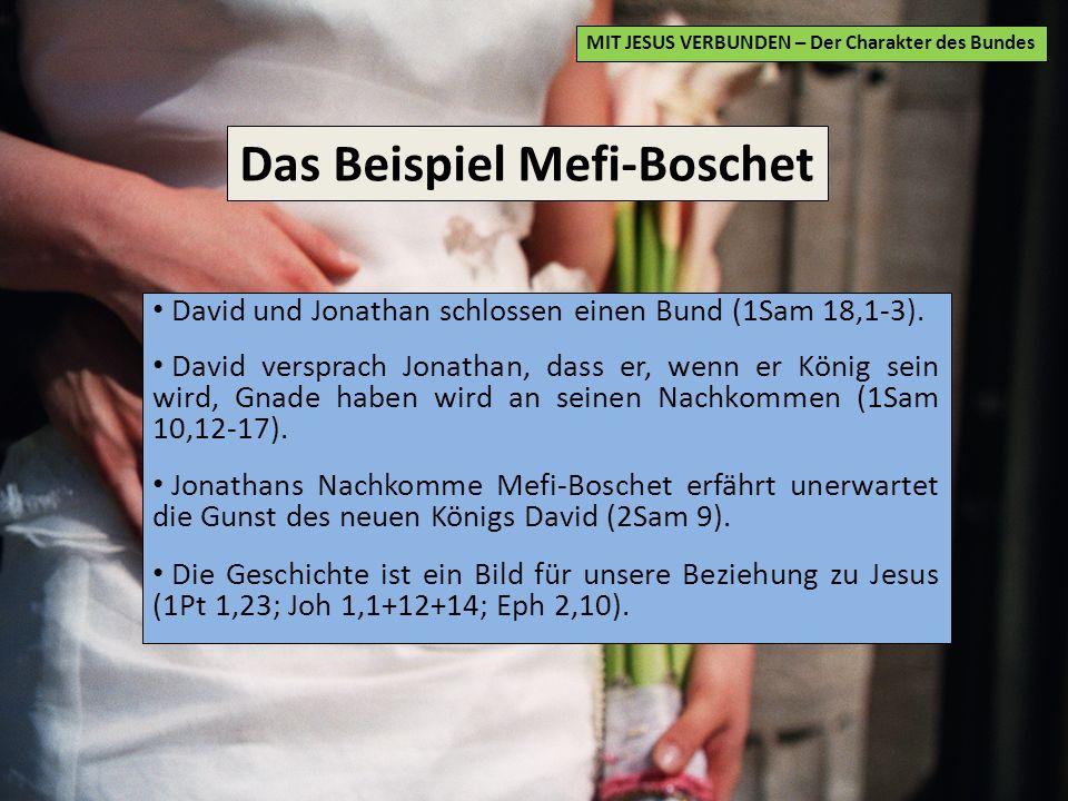 Das Beispiel Mefi-Boschet