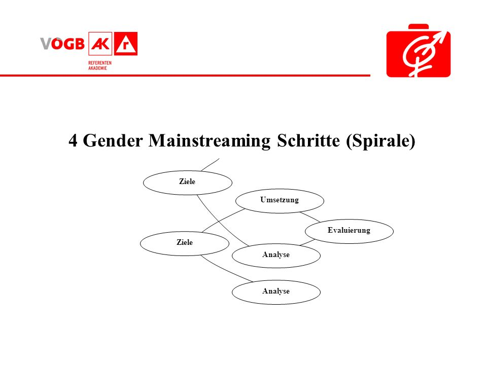 4 Gender Mainstreaming Schritte (Spirale)