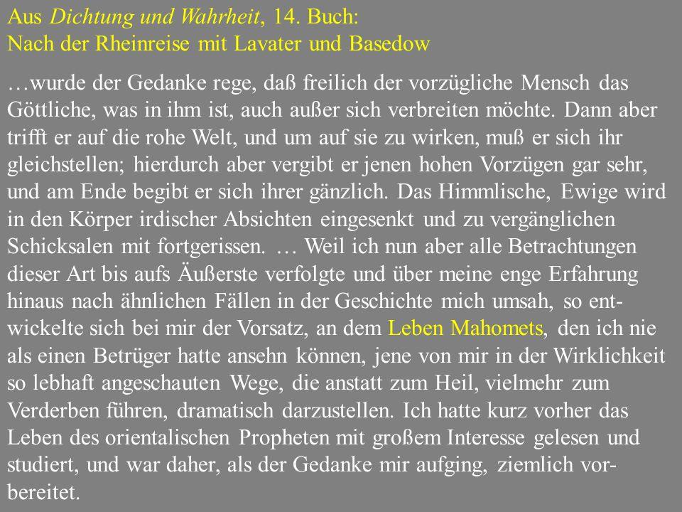 Aus Dichtung und Wahrheit, 14. Buch: