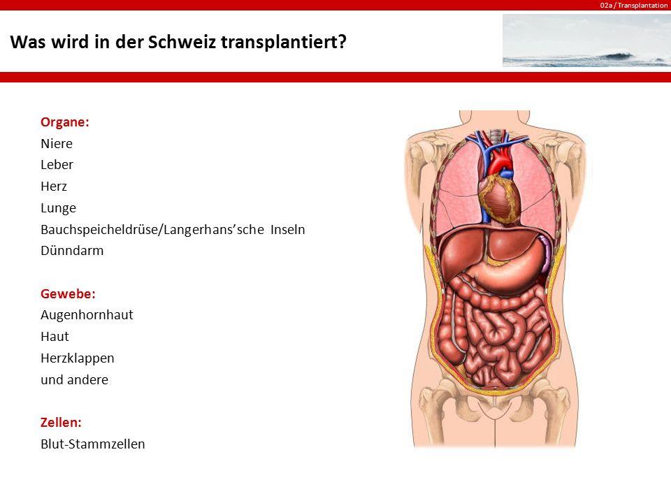 Was wird in der Schweiz transplantiert