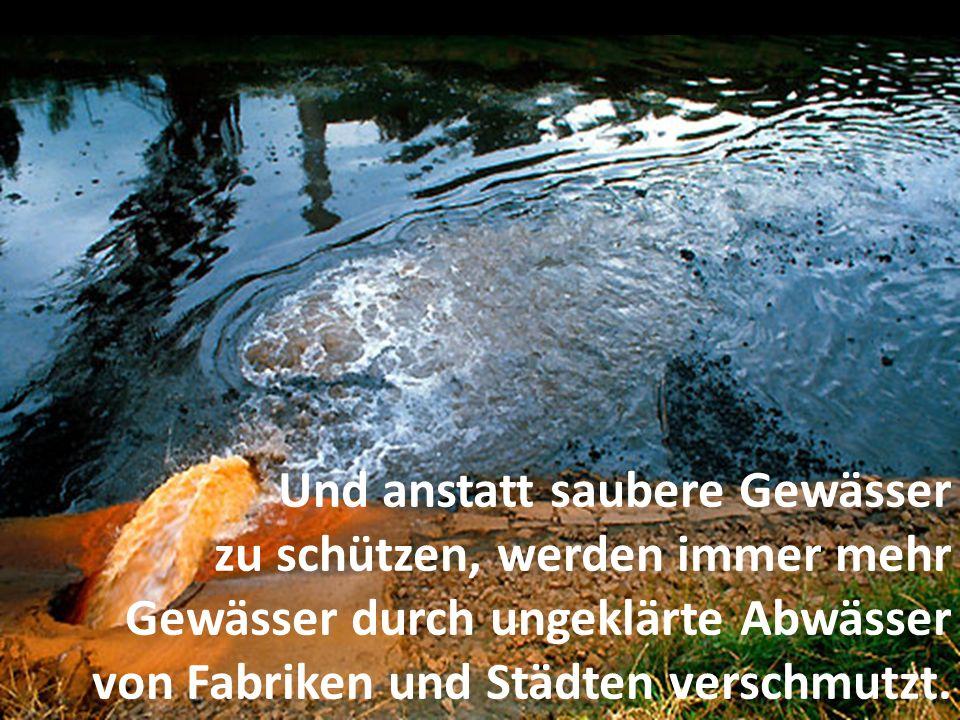 Und anstatt saubere Gewässer zu schützen, werden immer mehr Gewässer durch ungeklärte Abwässer von Fabriken und Städten verschmutzt.