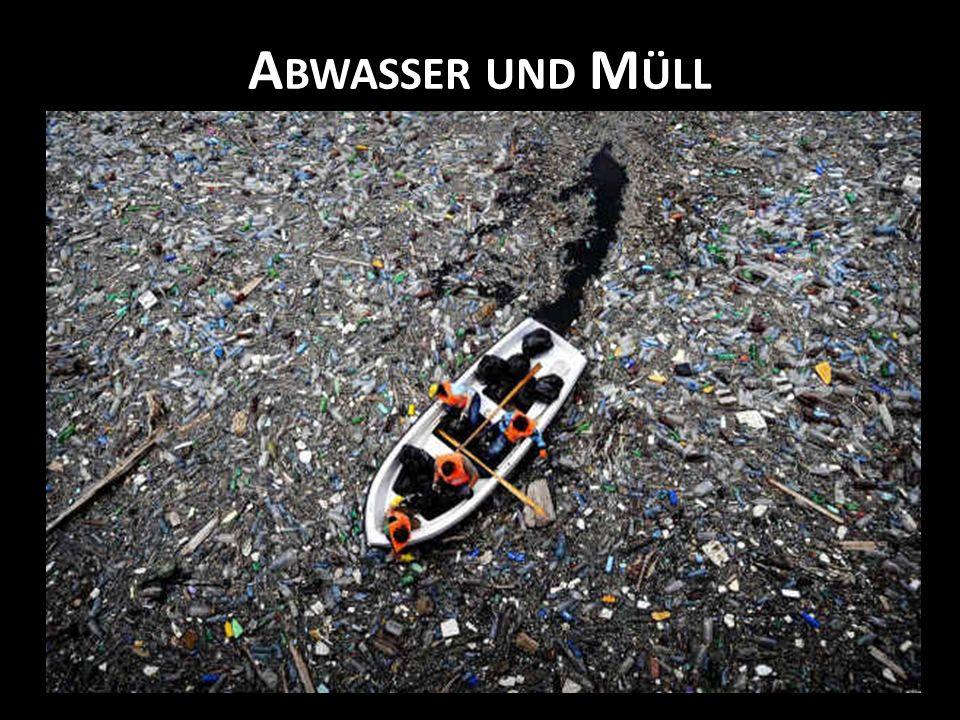 Abwasser und Müll