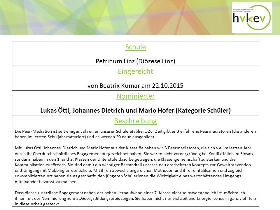 Lukas Öttl, Johannes Dietrich und Mario Hofer (Kategorie Schüler)