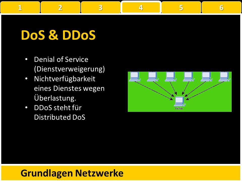 DoS & DDoS Grundlagen Netzwerke 1 2 3 4 5 6