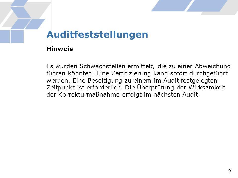 Auditfeststellungen