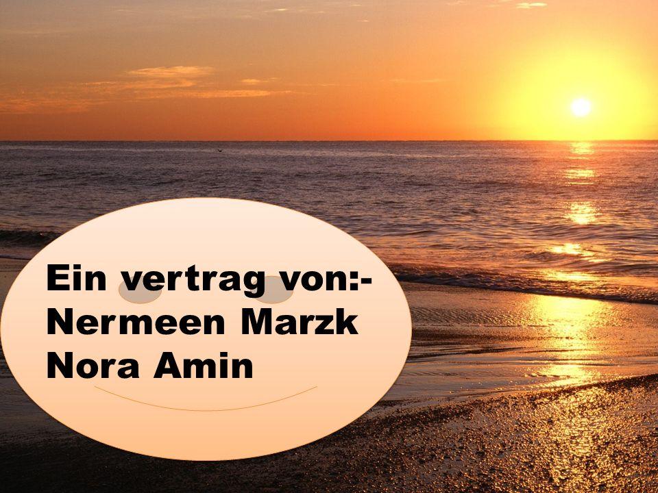 Ein vertrag von:- Nermeen Marzk Nora Amin