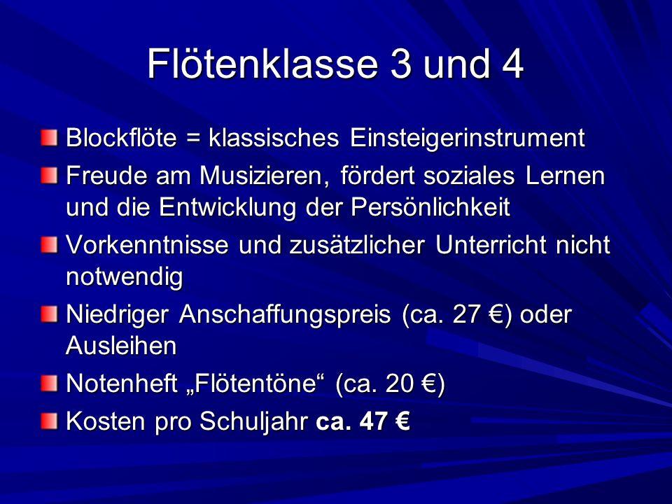 Flötenklasse 3 und 4 Blockflöte = klassisches Einsteigerinstrument
