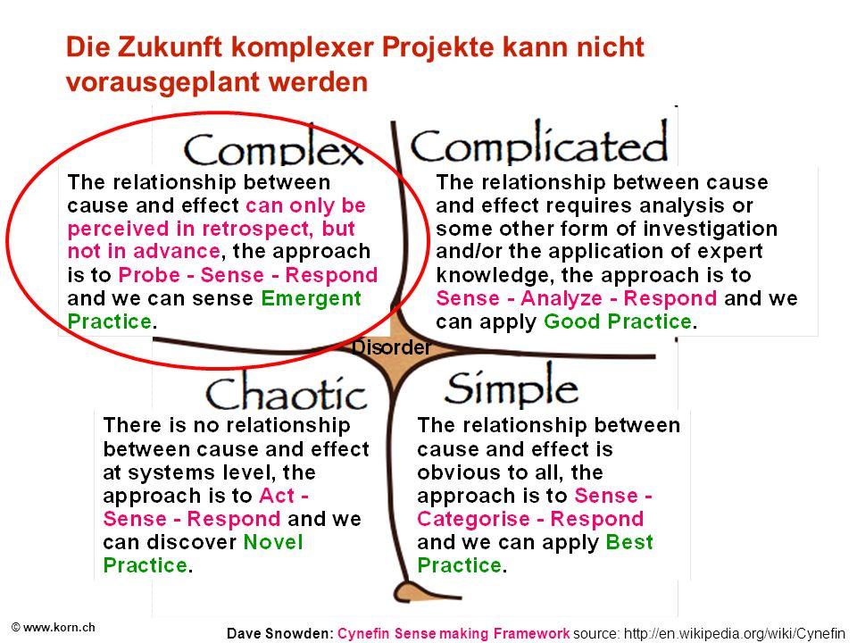 Die Zukunft komplexer Projekte kann nicht vorausgeplant werden
