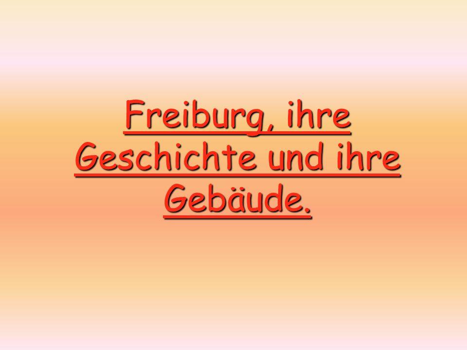 Freiburg, ihre Geschichte und ihre Gebäude.