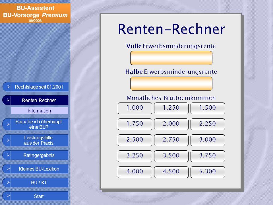 Renten-Rechner Volle Erwerbsminderungsrente