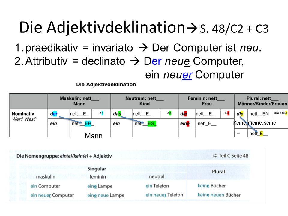 Die Adjektivdeklination S. 48/C2 + C3