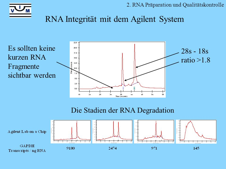 RNA Integrität mit dem Agilent System