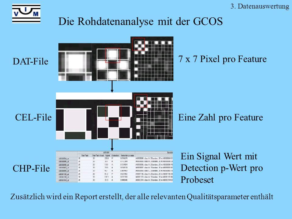 Die Rohdatenanalyse mit der GCOS