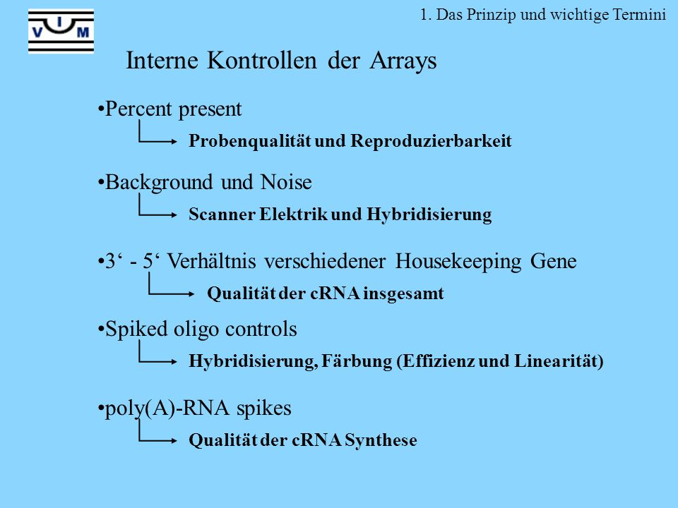 Interne Kontrollen der Arrays