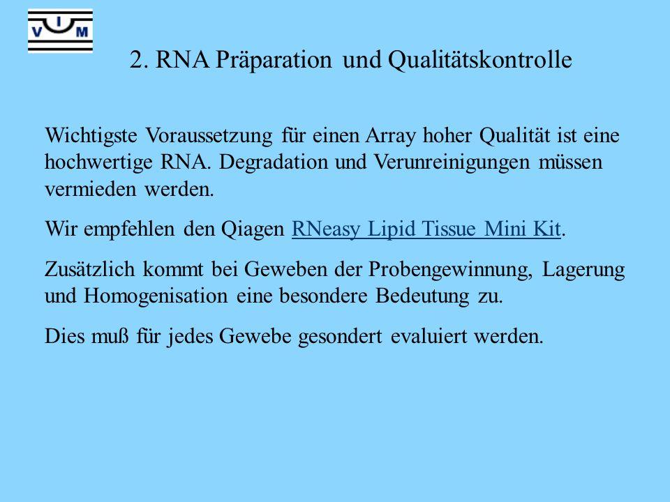 2. RNA Präparation und Qualitätskontrolle