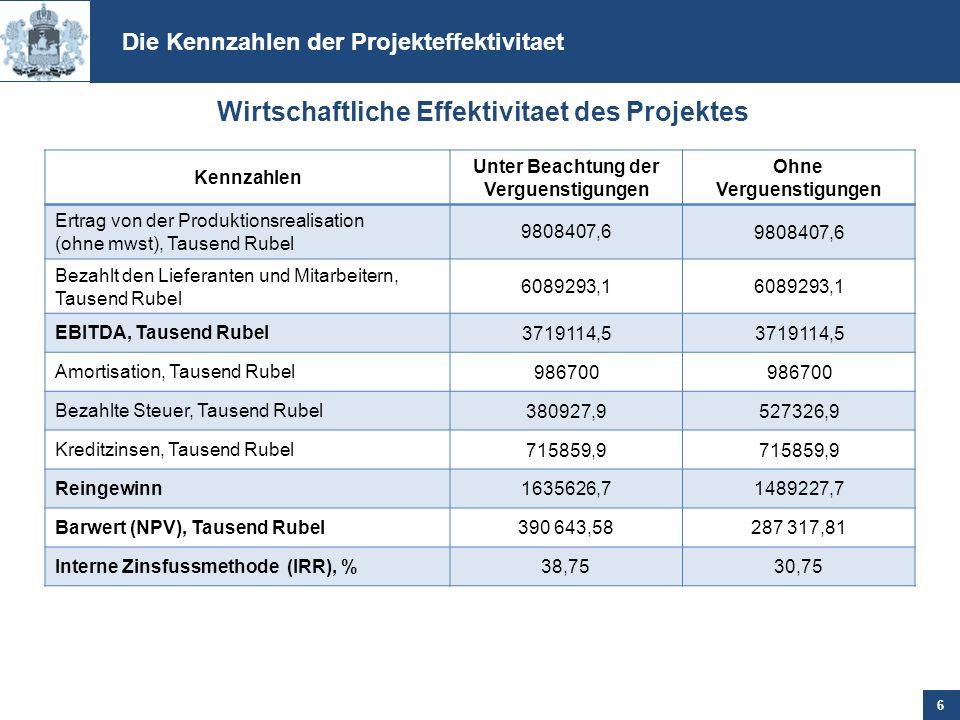 Wirtschaftliche Effektivitaet des Projektes