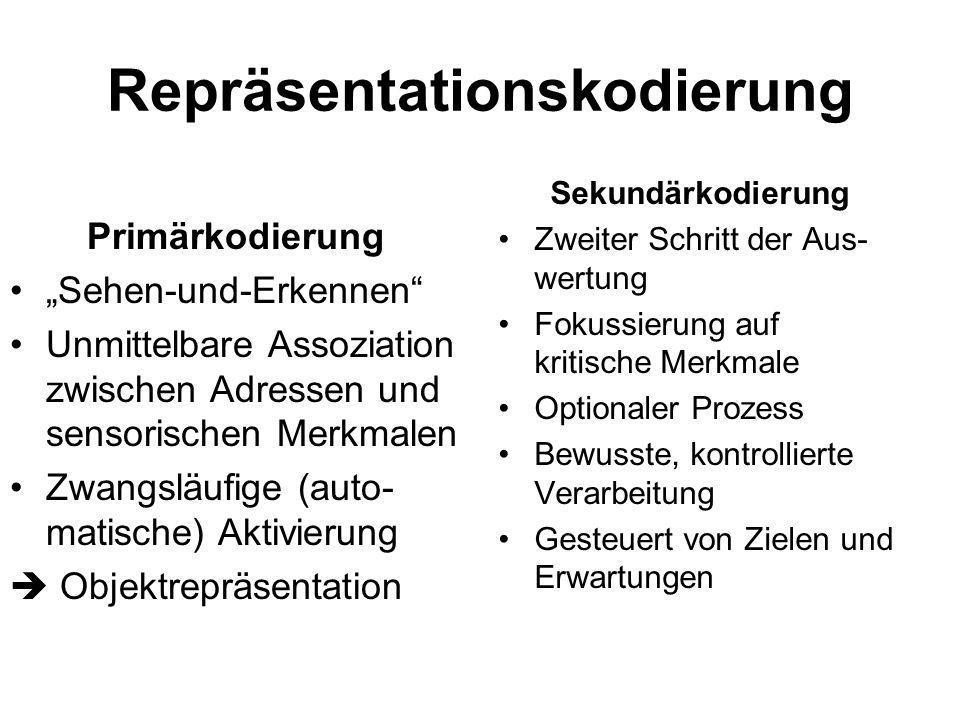 Repräsentationskodierung