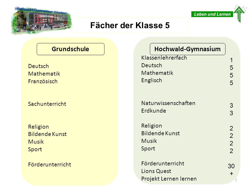 Fächer der Klasse 5 Grundschule Hochwald-Gymnasium Klassenlehrerfach