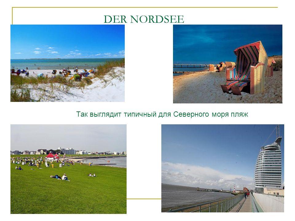 DER NORDSEE Так выглядит типичный для Северного моря пляж