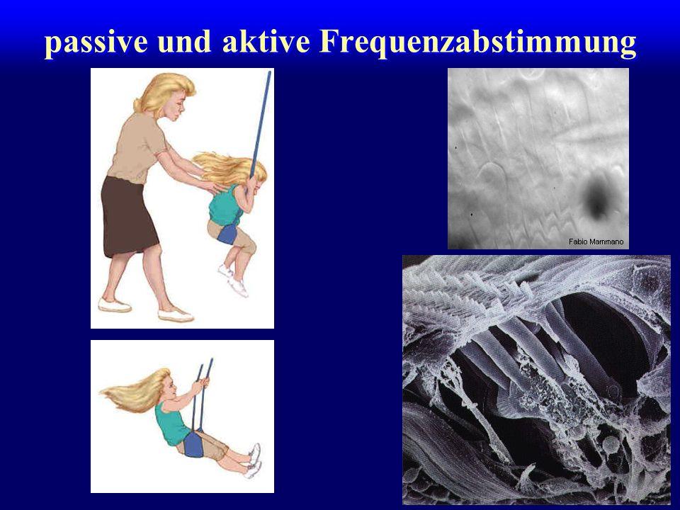 passive und aktive Frequenzabstimmung