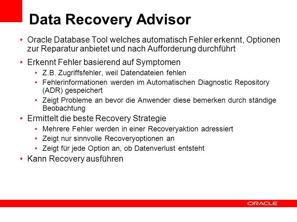 Data Recovery Advisor Oracle Database Tool welches automatisch Fehler erkennt, Optionen zur Reparatur anbietet und nach Aufforderung durchführt.