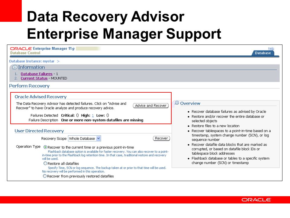 Data Recovery Advisor Enterprise Manager Support