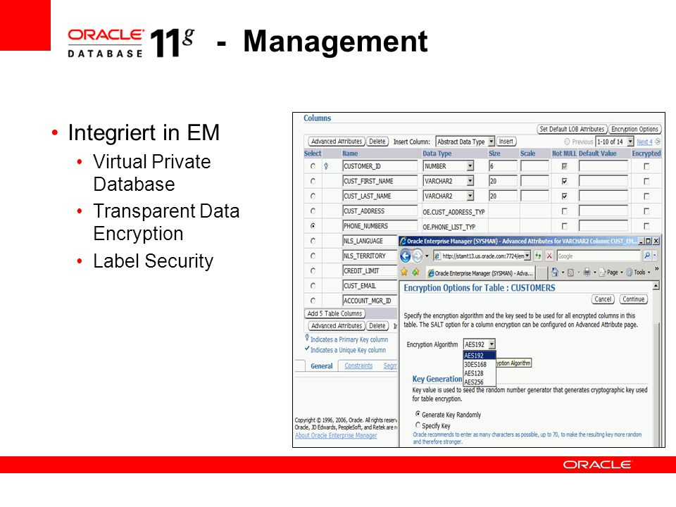 - Management Integriert in EM Virtual Private Database