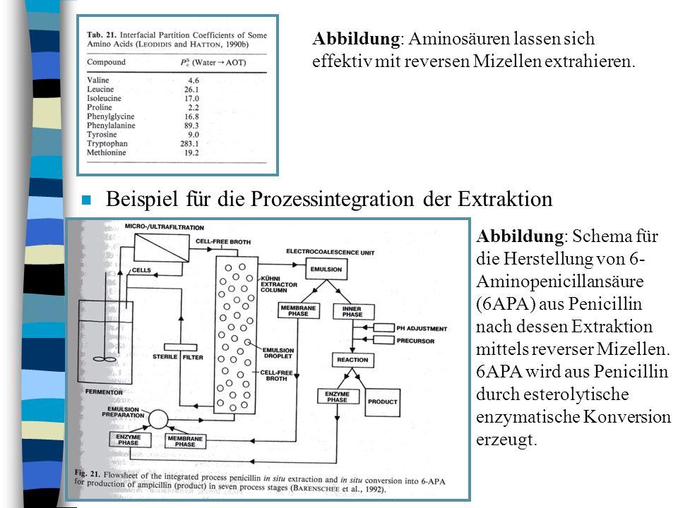 Beispiel für die Prozessintegration der Extraktion