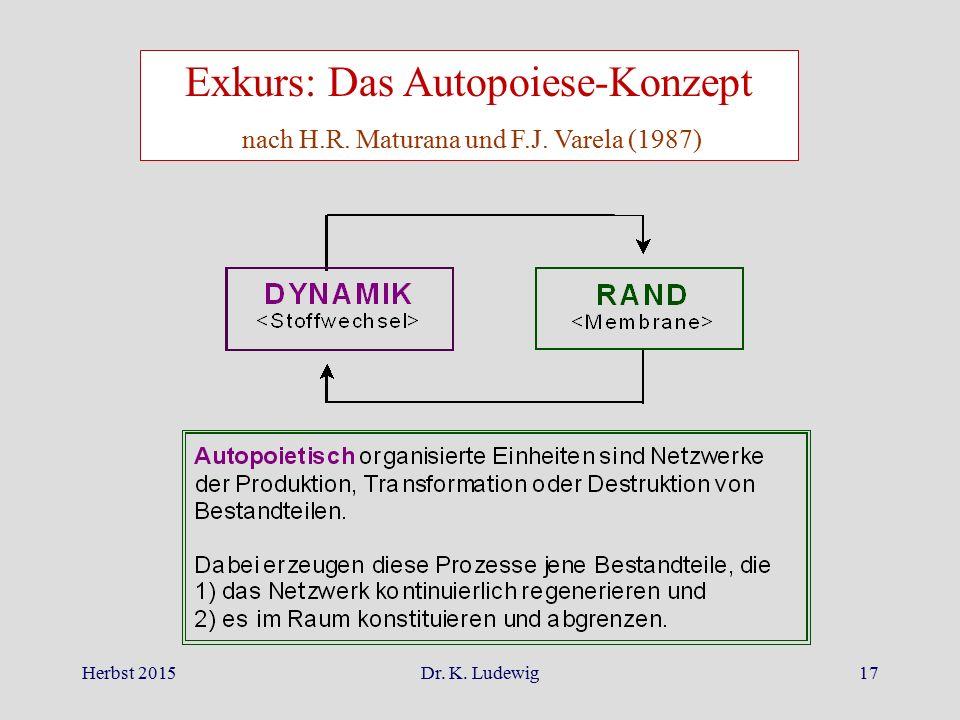 Exkurs: Das Autopoiese-Konzept