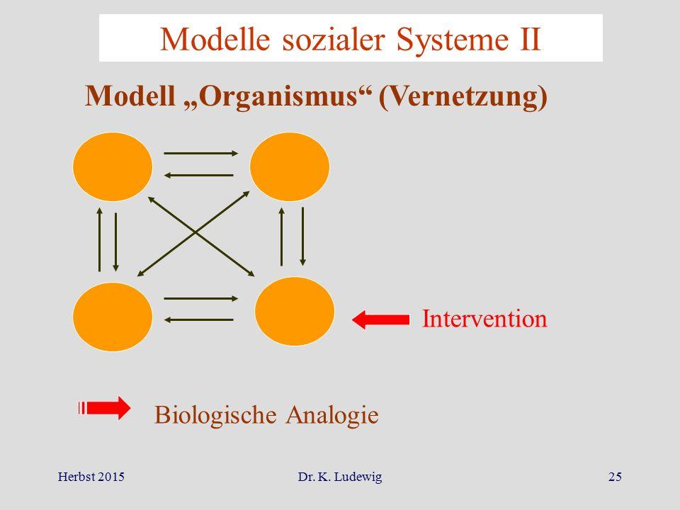 Modelle sozialer Systeme II