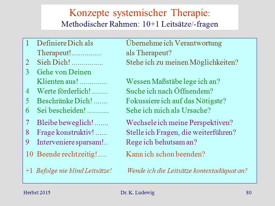 Konzepte systemischer Therapie: Methodischer Rahmen: 10+1 Leitsätze/-fragen