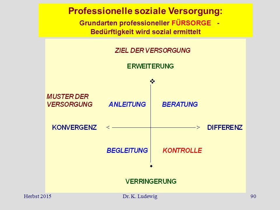 Professionelle soziale Versorgung: