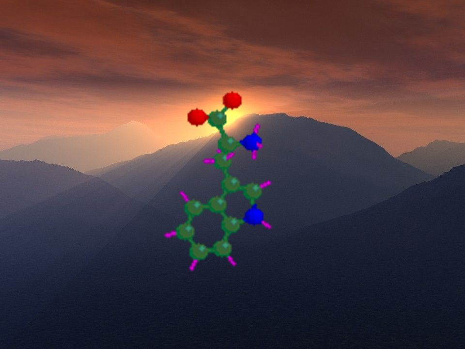 Modell des Tryptophan Moleküls