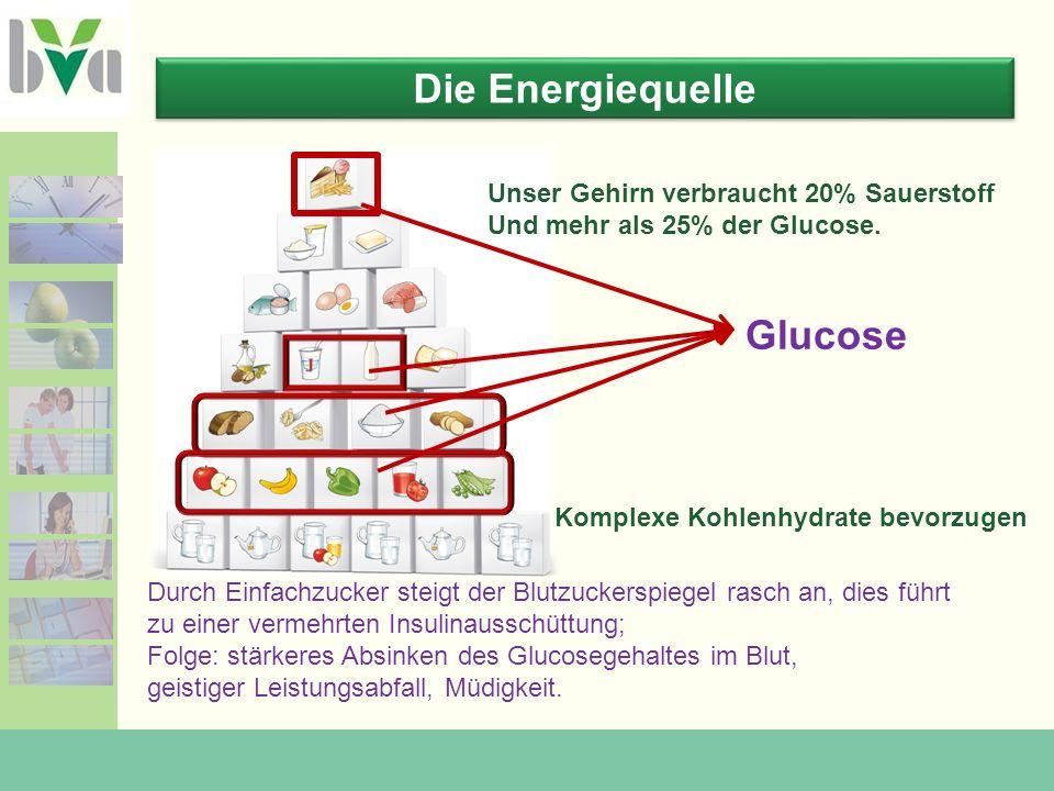 Die Energiequelle Glucose Unser Gehirn verbraucht 20% Sauerstoff